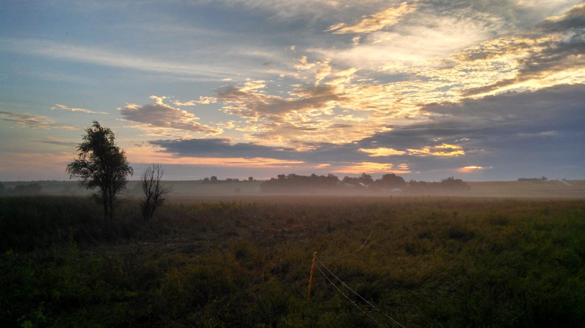 Sunrise over the wetlands